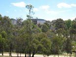 キャンパス内には林もあります。